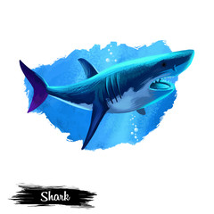 Shark in water realistic design isolated on white background digital art illustration. Underwater dangerous fish, marine predator with large teeth, giant undersea animal, wildlife creature
