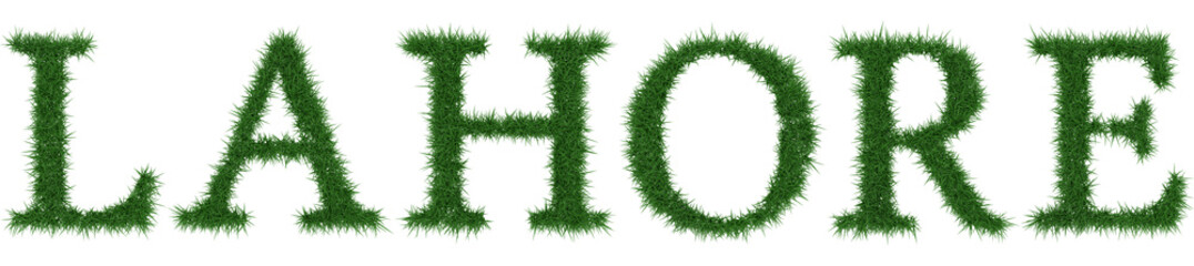 Lahore - 3D rendering fresh Grass letters isolated on whhite background.