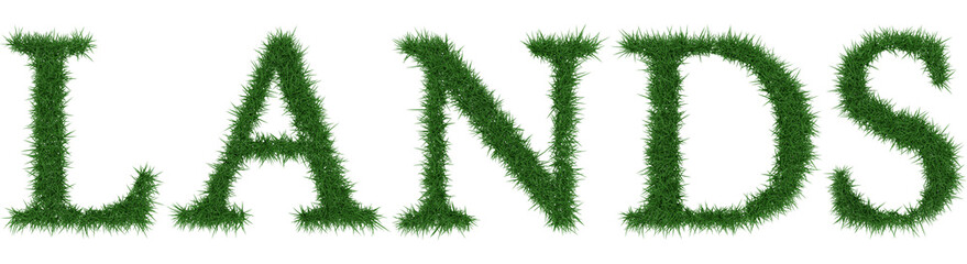 Lands - 3D rendering fresh Grass letters isolated on whhite background.