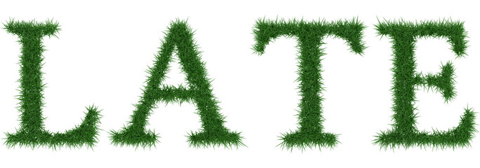 Late - 3D rendering fresh Grass letters isolated on whhite background.