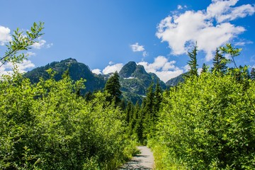 Hiking Trail and the mountains view at North Cascades National Park, Washington, USA