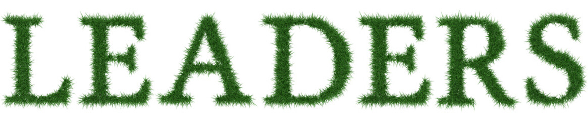 Leaders - 3D rendering fresh Grass letters isolated on whhite background.