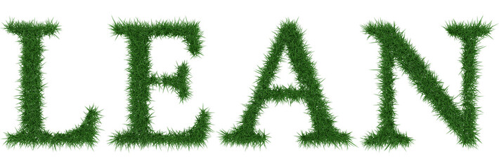 Lean - 3D rendering fresh Grass letters isolated on whhite background.