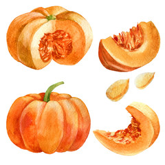 Watercolor illustration. Pumpkin in different angles, a whole pumpkin, a cut pumpkin, a piece of pumpkin, pumpkin seeds.