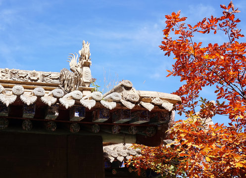 Autumn landscape, Beautiful  autumn leaves and Chinese ancient architecture in Lanzhou, China. Autumn 2016