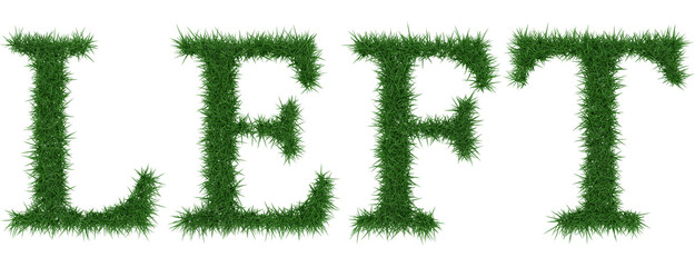 Left - 3D rendering fresh Grass letters isolated on whhite background.