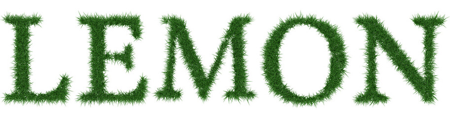 Lemon - 3D rendering fresh Grass letters isolated on whhite background.