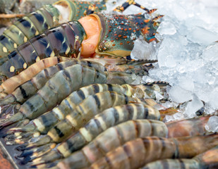 Fresh lobsters on ice