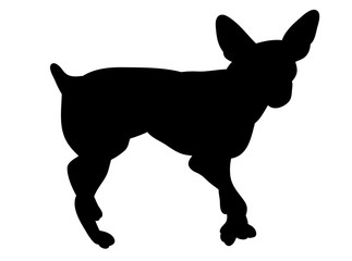 isolated black silhouette of a dog is standing