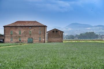 Rural landscape near Fidenza (Parma)