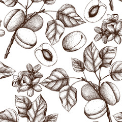 Vector seamless pattern with hand drawn apricot tree illustration