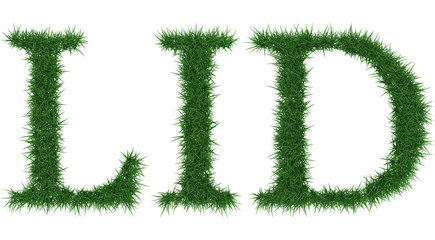 Lid - 3D rendering fresh Grass letters isolated on whhite background.