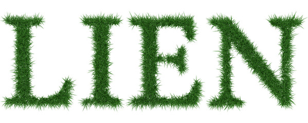 Lien - 3D rendering fresh Grass letters isolated on whhite background.