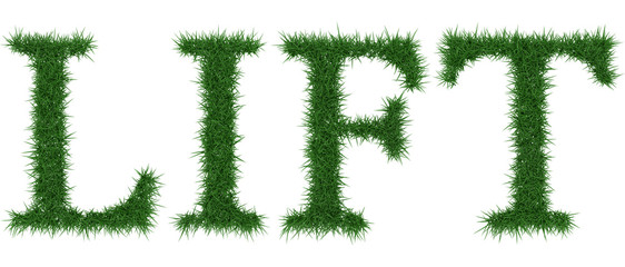 Lift - 3D rendering fresh Grass letters isolated on whhite background.