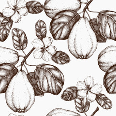 Seamless pattern with vector quince tree illustration
