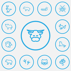 Set Of 13 Editable Zoo Outline Icons. Includes Symbols Such As Beetle, Predator, Buffalo And More. Can Be Used For Web, Mobile, UI And Infographic Design.