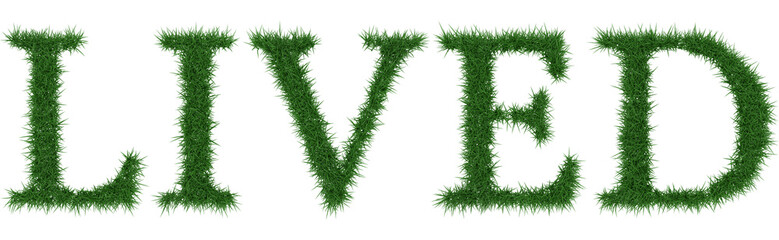 Lived - 3D rendering fresh Grass letters isolated on whhite background.