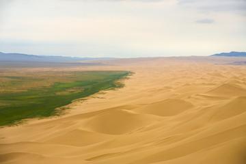 Khongor Els Sand Dune Grass Edge Gobi Desert