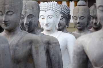 row of buddha statue as background.