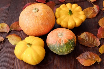 Fresh autumn vegetables pumpkin and squash on the table