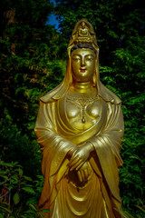 Impressive golden statues at Ten Thousand Buddhas Monastery in Sha Tin, Hong Kong