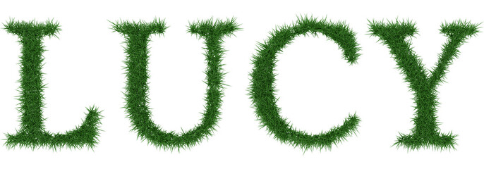Lucy - 3D rendering fresh Grass letters isolated on whhite background.