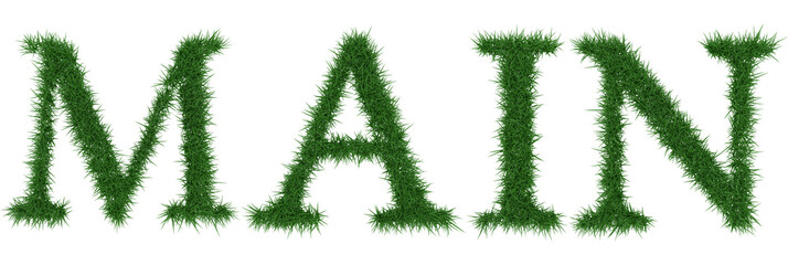 Main - 3D rendering fresh Grass letters isolated on whhite background.