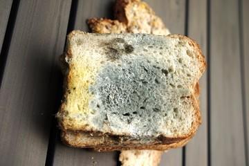 ..............Essen, Nahrung, Brot, Schimmel, verdorben