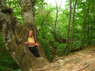 girl in a hollow tree in the woods