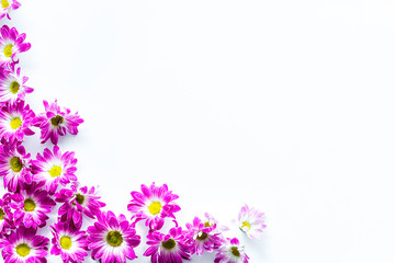 Floral pattern with pink flowers on white background top view copyspace