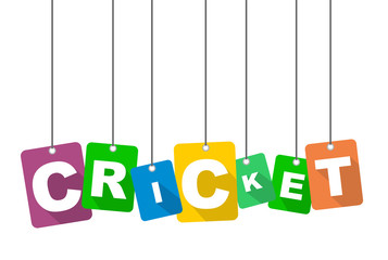 Colorful vector flat design background cricket. It is well adapted for web design.