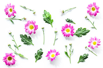 Floral pattern with pink flowers and green leaves on white background top view