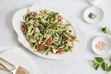 Gemelli pasta salad