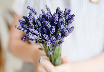 Hands holding a bunch of lavender flowers
