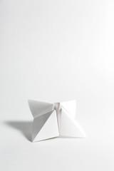 Single White Fortune Teller...