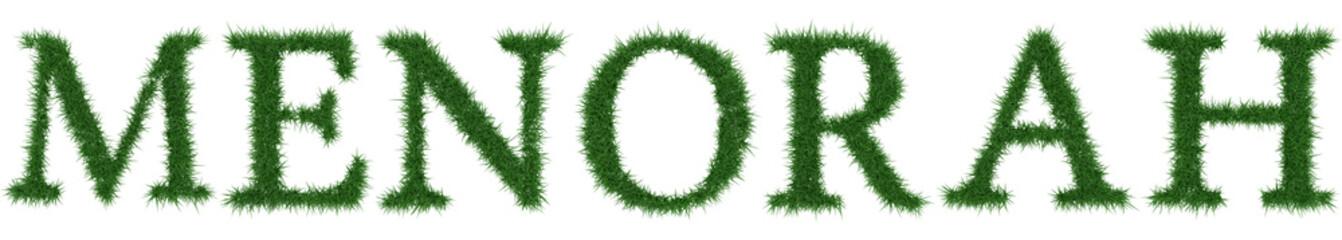 Menorah - 3D rendering fresh Grass letters isolated on whhite background.