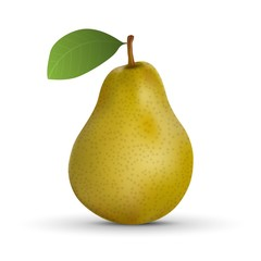 realistic pear isolated on white background. Vector illustration