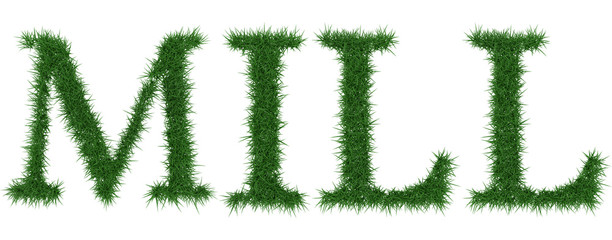 Mill - 3D rendering fresh Grass letters isolated on whhite background.