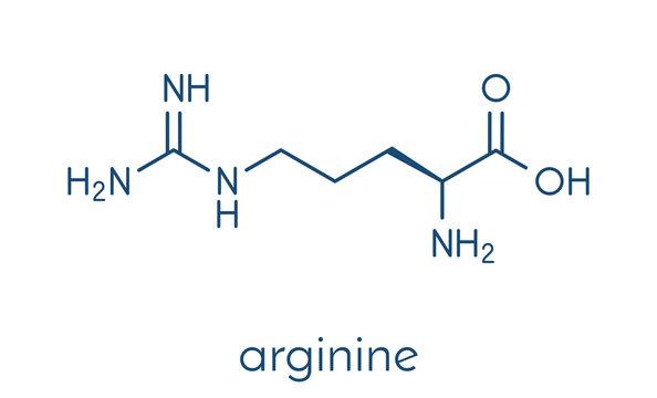 Arginine (L-arginine, Arg, R) amino acid molecule. Skeletal formula.
