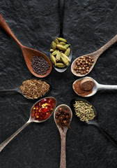 Dried exotic spices on different beautiful spoons