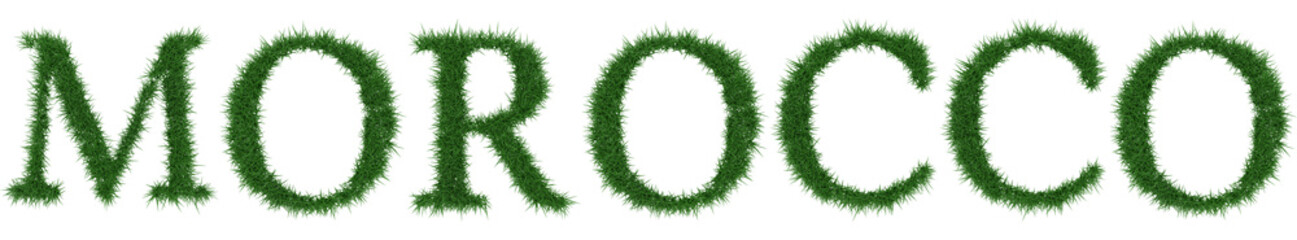 Morocco - 3D rendering fresh Grass letters isolated on whhite background.