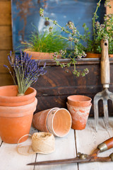 Vintage gardening tools, plant pots and metal chest.