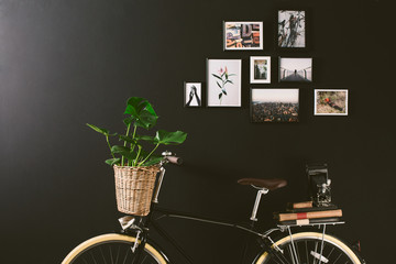 Closeup of a vintage bicycle holding a plant in a basket in front of a black wall.