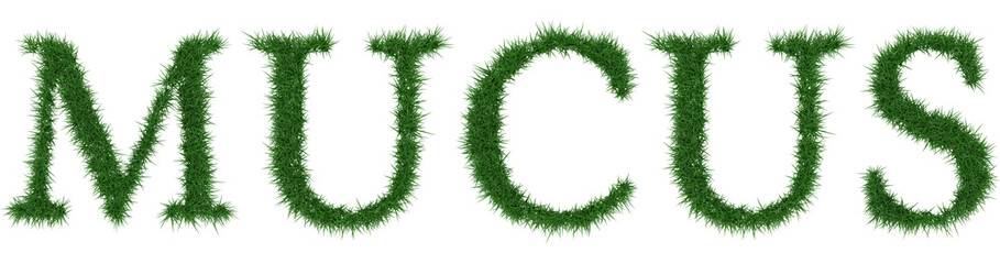 Mucus - 3D rendering fresh Grass letters isolated on whhite background.
