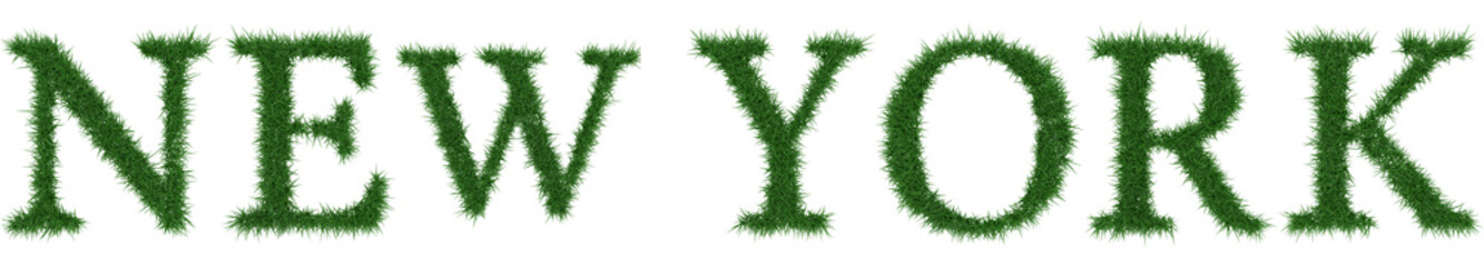New York - 3D rendering fresh Grass letters isolated on whhite background.