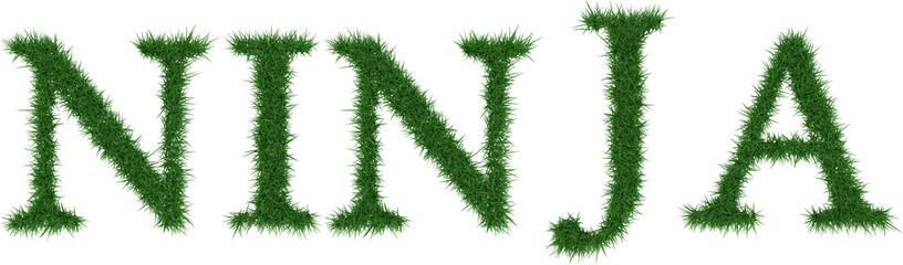 Ninja - 3D rendering fresh Grass letters isolated on whhite background.