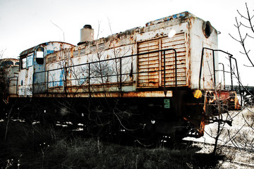 old rusty train locomotive in the trees