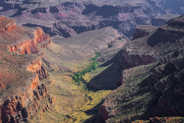 Grand Canyon National Park. Picturesque valley at the bottom of the canyon