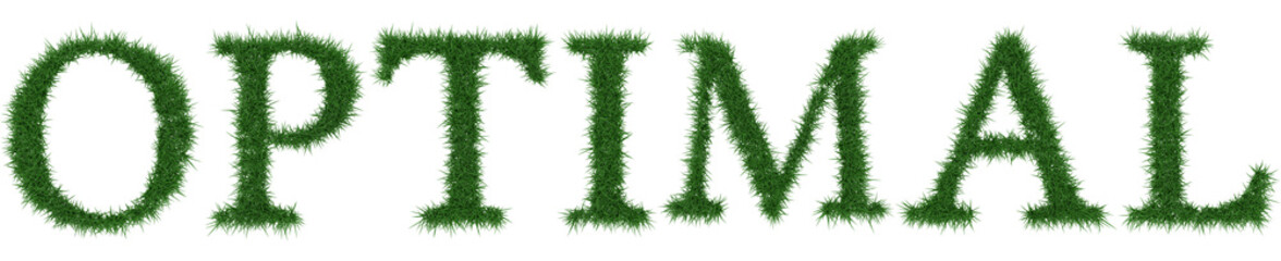 Optimal - 3D rendering fresh Grass letters isolated on whhite background.