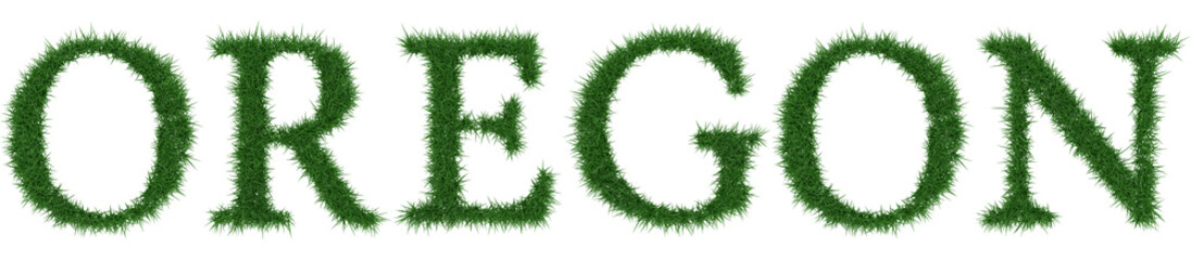 Oregon - 3D rendering fresh Grass letters isolated on whhite background.